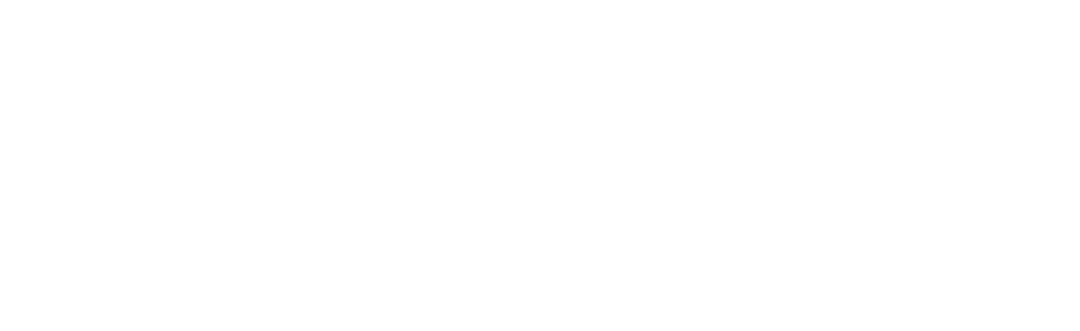 Tikky Town logo